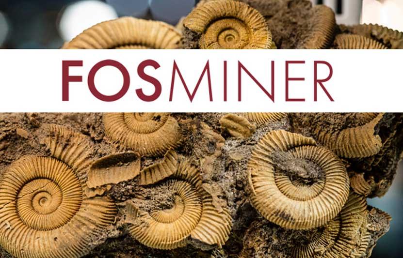 Fosminer: exposición de fósiles y minerales en Bilbao
