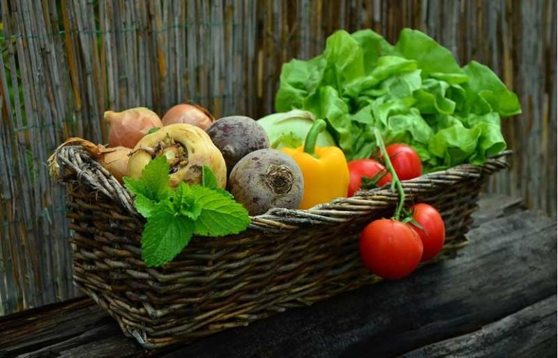 Dónde comer comida vegana en Bilbao