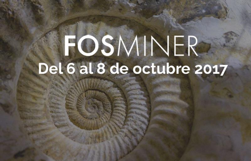 Feria de fósiles y minerales en Bilbao 2017